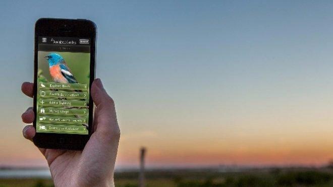 Outdoor Ed Apps