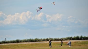 Five Reasons to go Fly a Kite